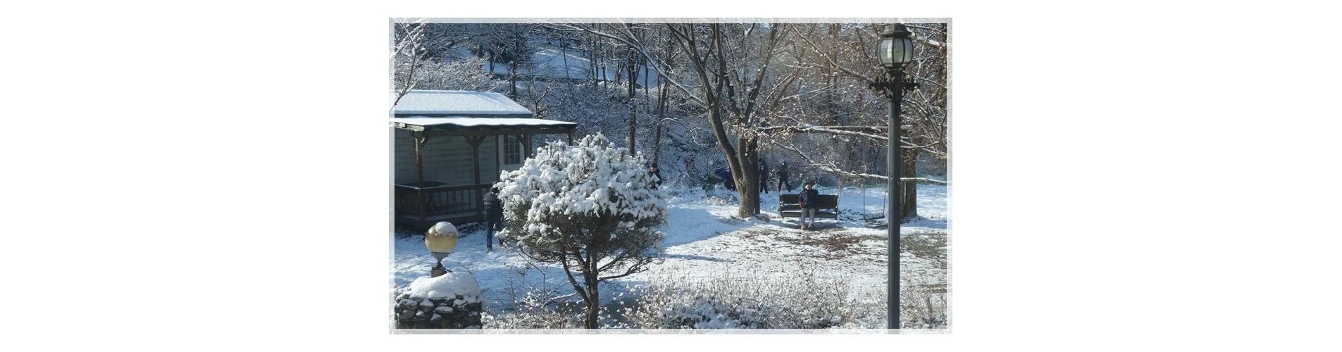 2014-12-05 푸른숲